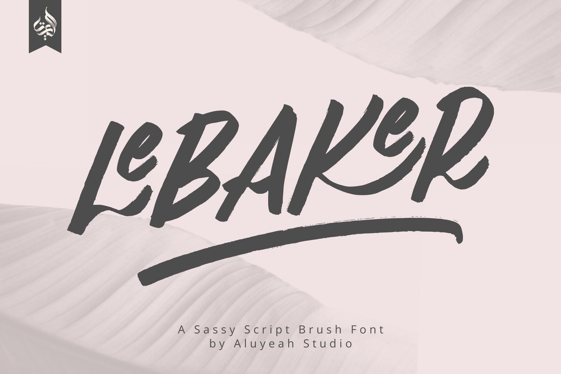 AL Lebaker - Homemade Script Font example image 1