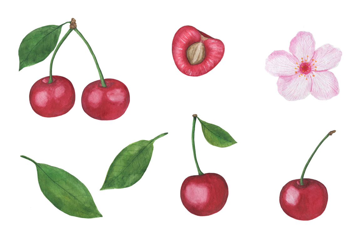 Set Cherry watercolor example image 8