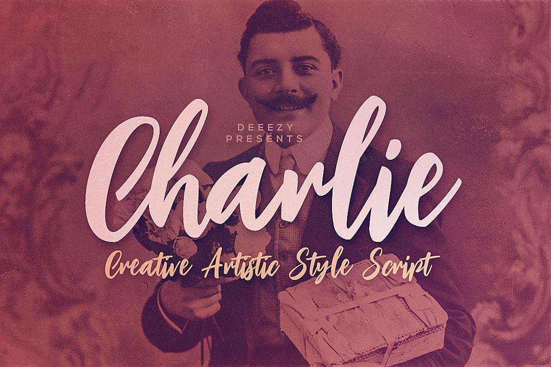 Charlie Script Font example image 1
