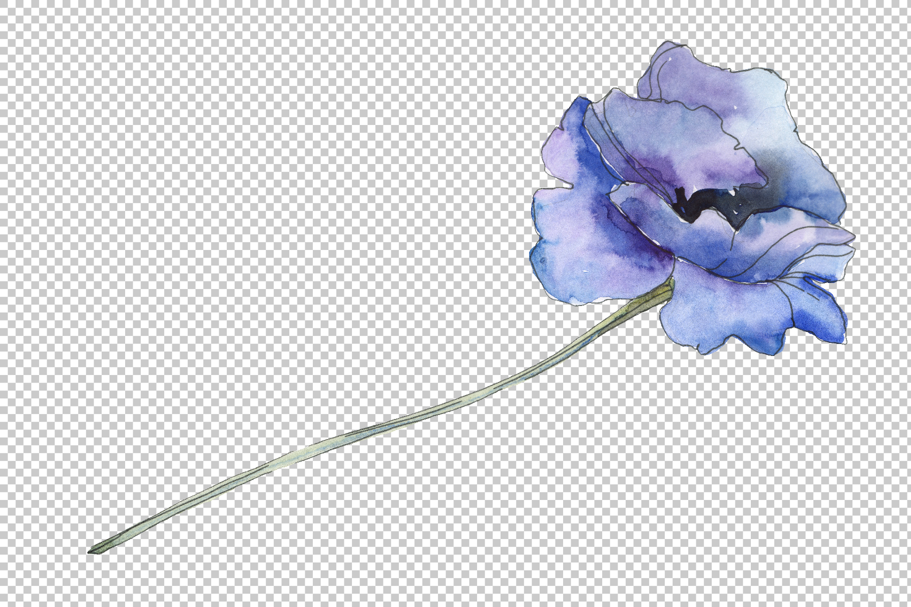 Poppy 1 Watercolor png example image 6