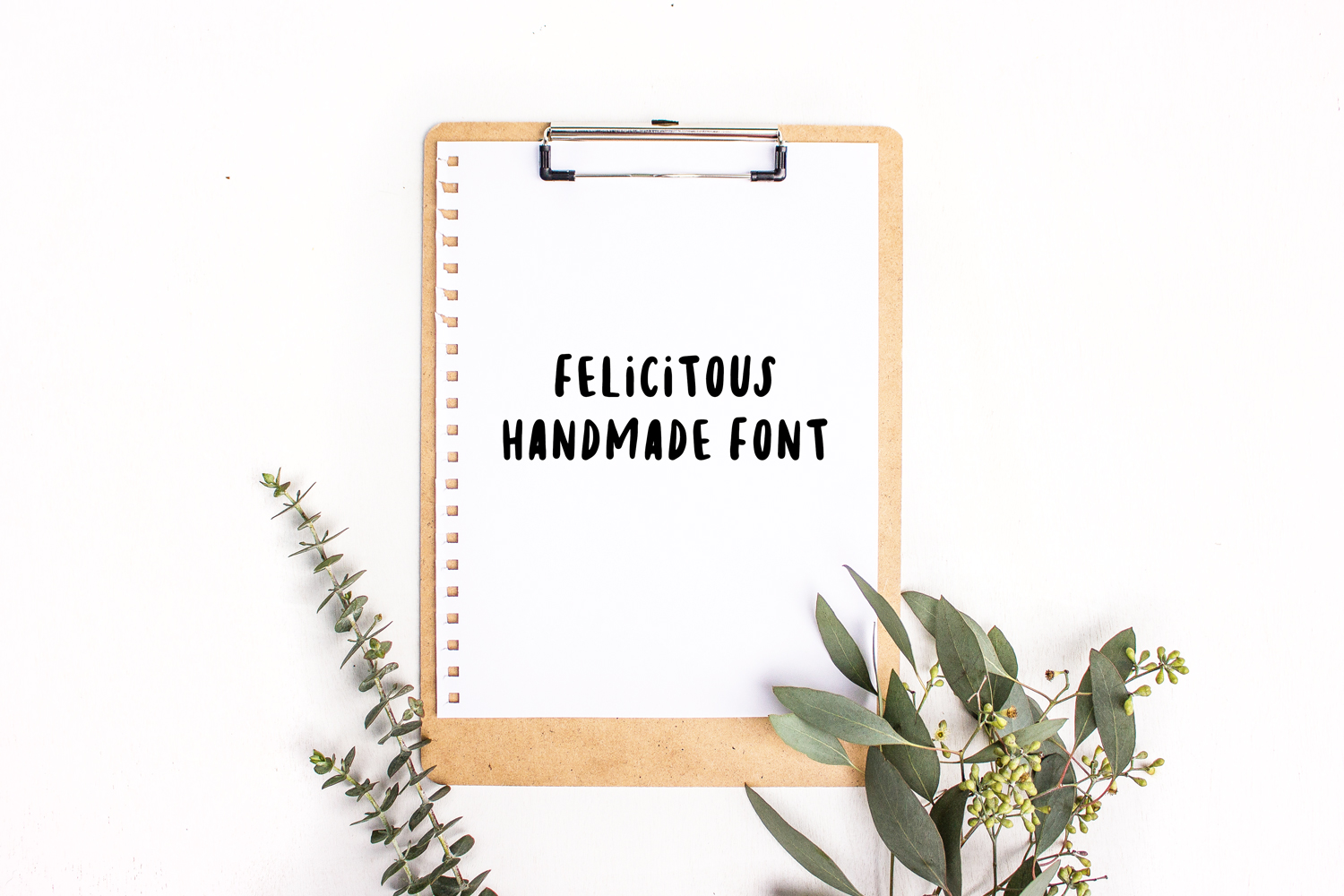 Felicitous Font example image 1