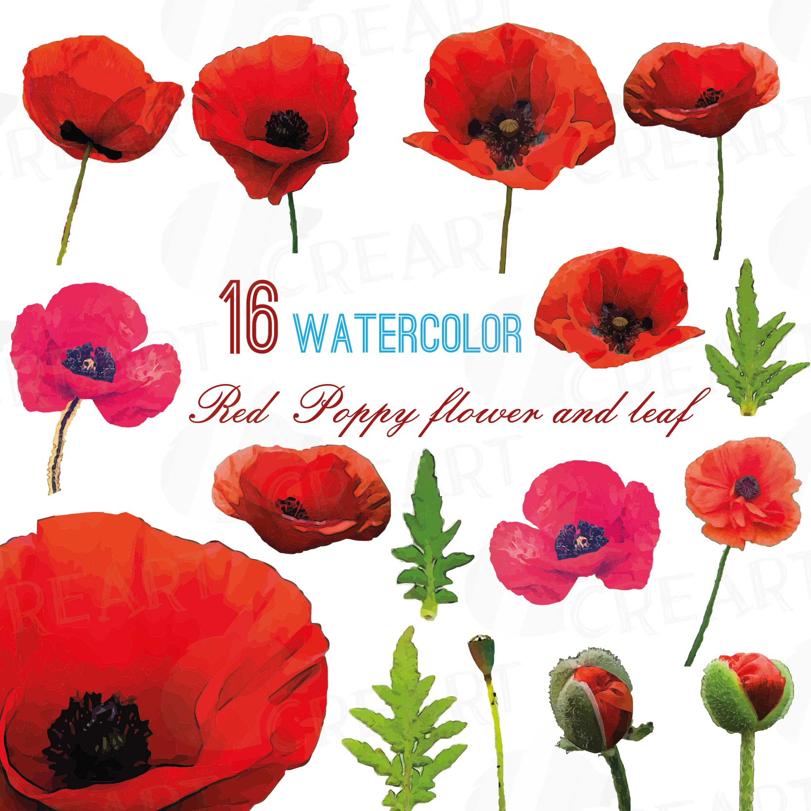 Watercolor red poppy flower and leaf cl design bundles watercolor red poppy flower and leaf clip art pack poppies clip art png mightylinksfo