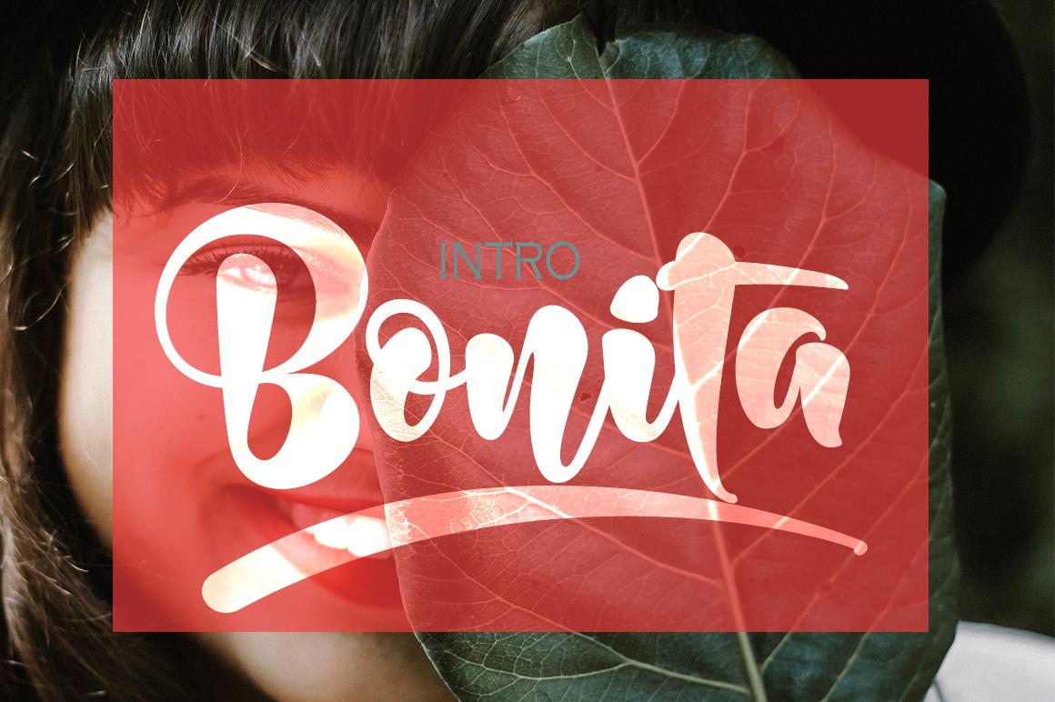 Bonita Bold example image 1