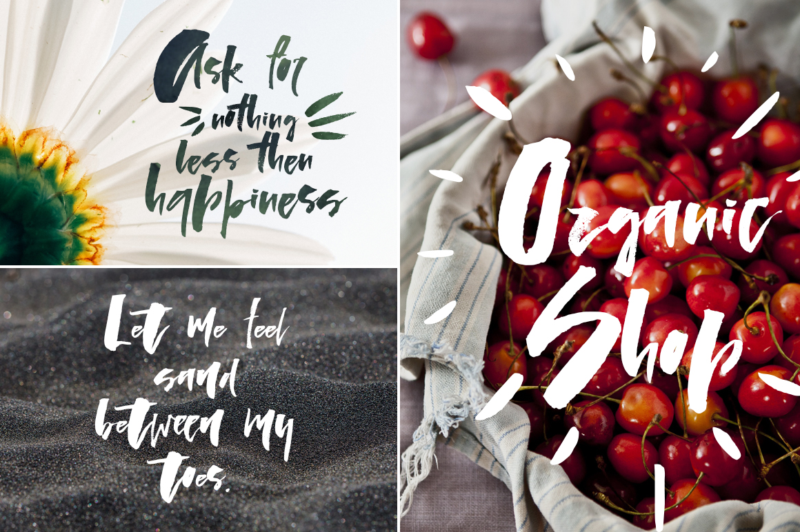Lady in Red - script font example image 6