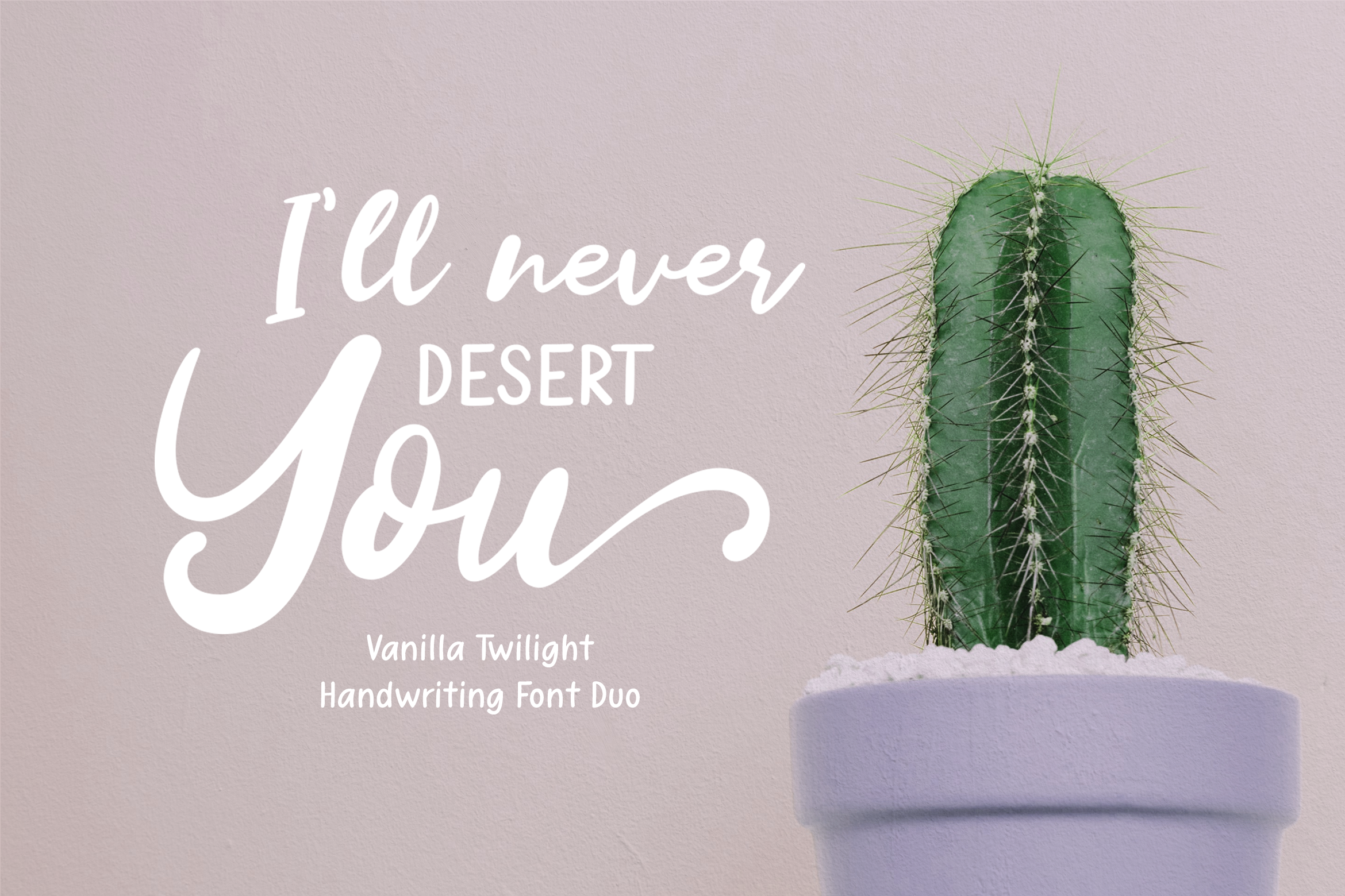 Vanilla Twilight // Handwritten Font Duo example image 3