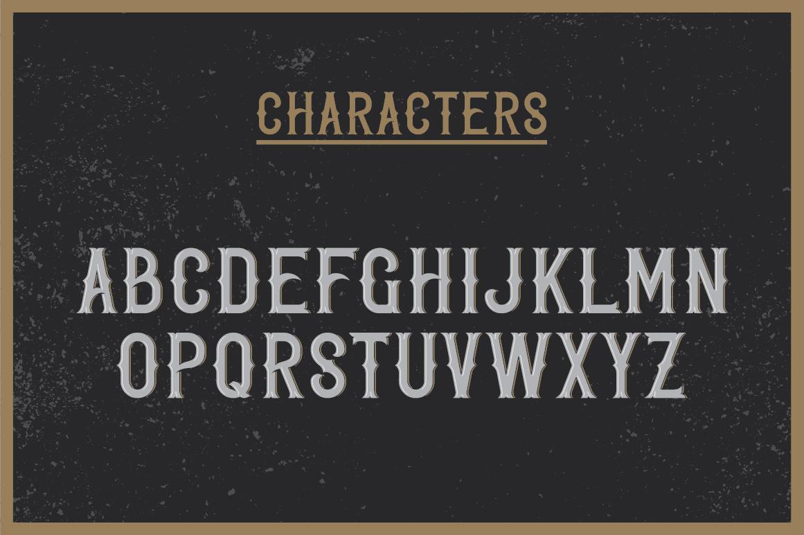 Whiskey Fonts Bundle example image 12