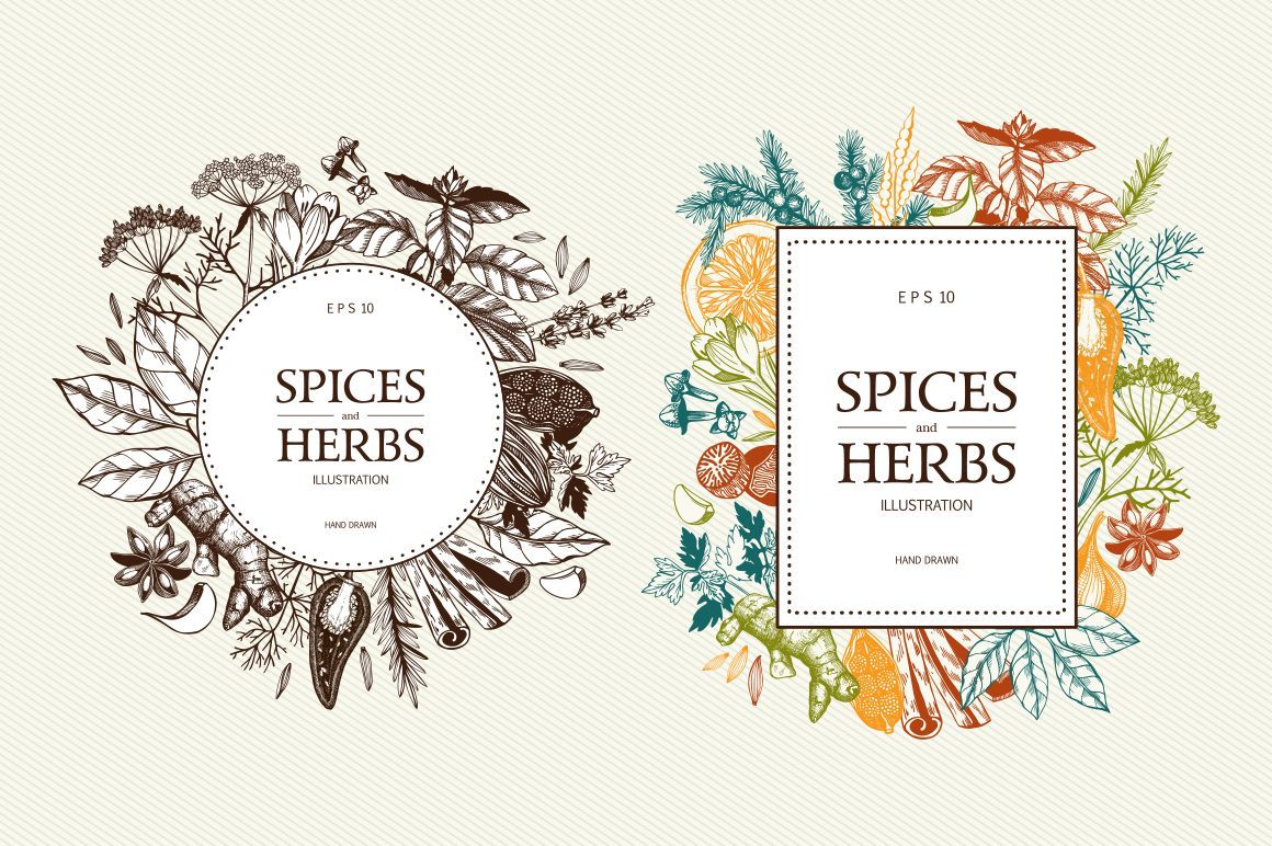 Ink Hand Drawn Spice Collection example image 7