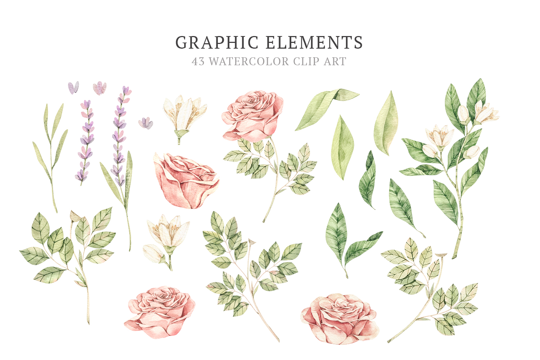 Organic LAB. Watercolor botanical illustrations example image 7