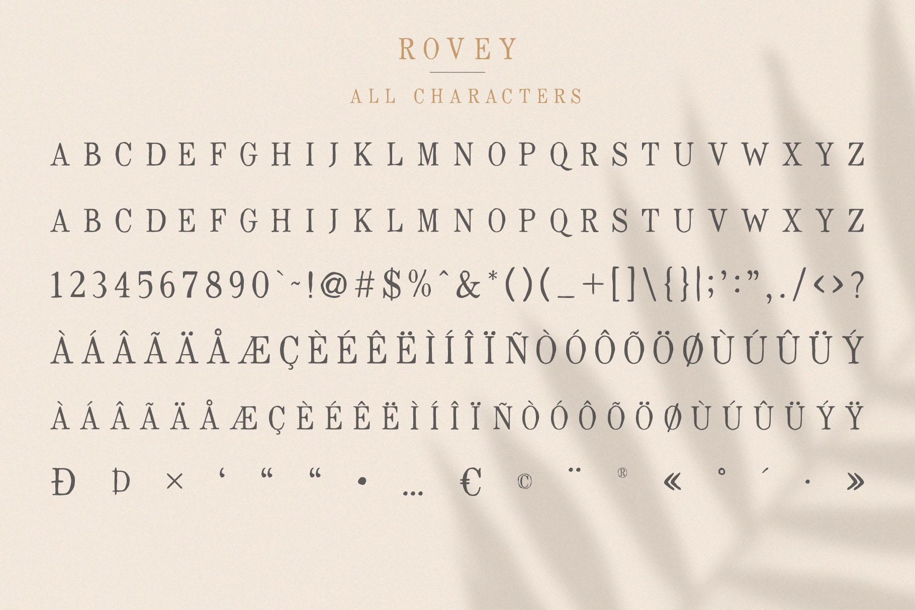 Rovey - Handwritten Serif Font with Bonus example image 8