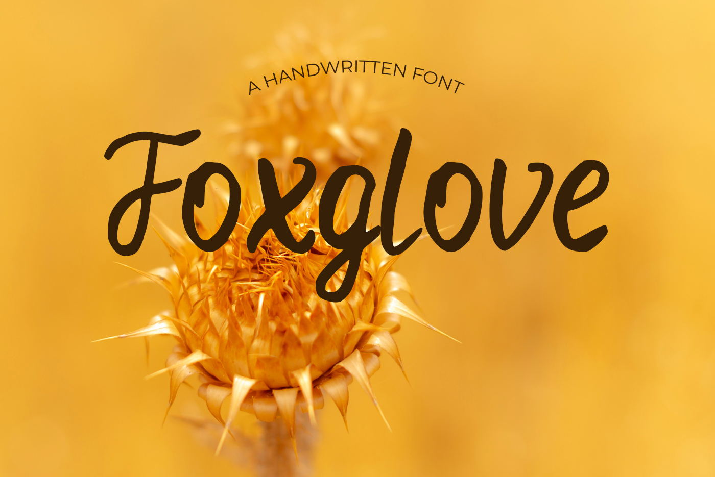 40 Handmade Fonts example image 19