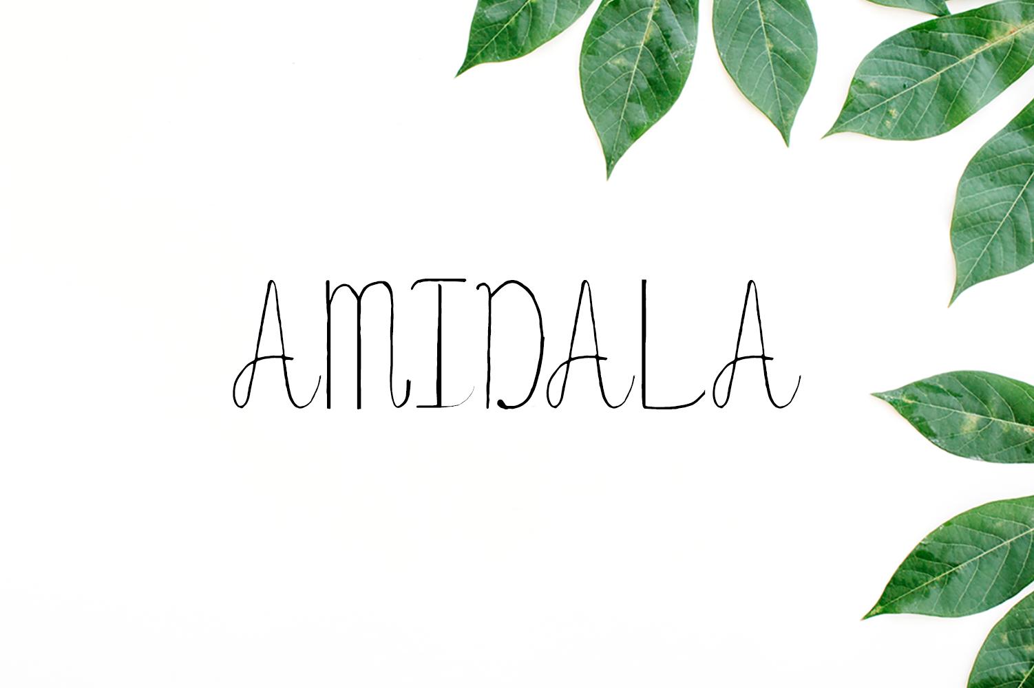 Amidala Script Font example image 1