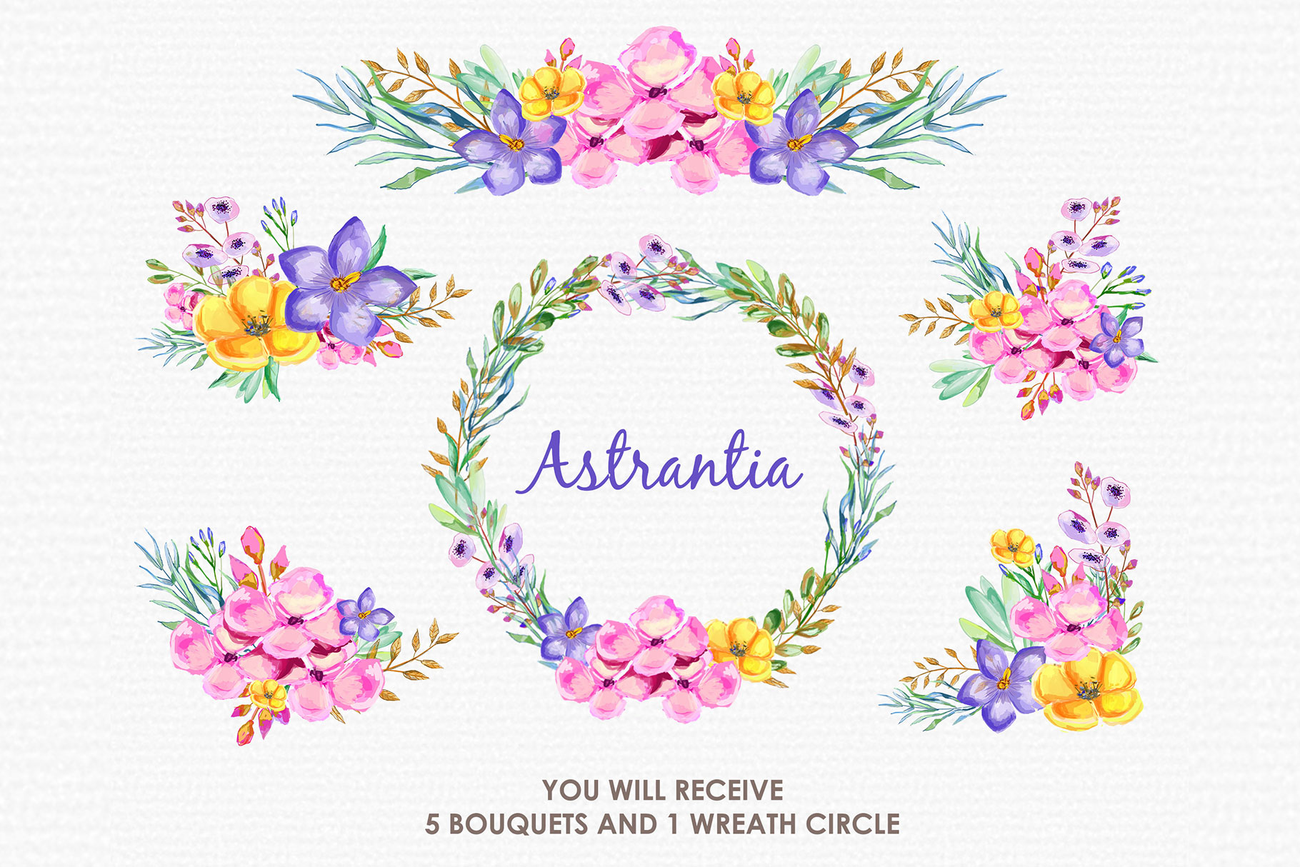 Astrantia - Digital Watercolor Floral Flower Style Clipart example image 3