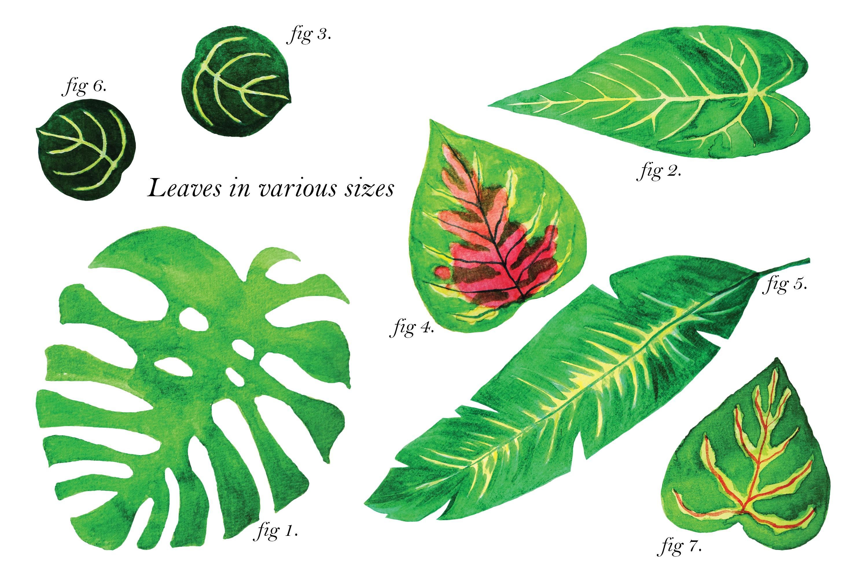 Jungle Parade example image 3