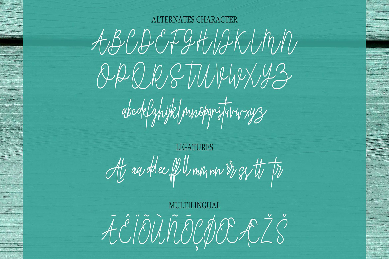 Tintri Pure - Script and Serif example image 10