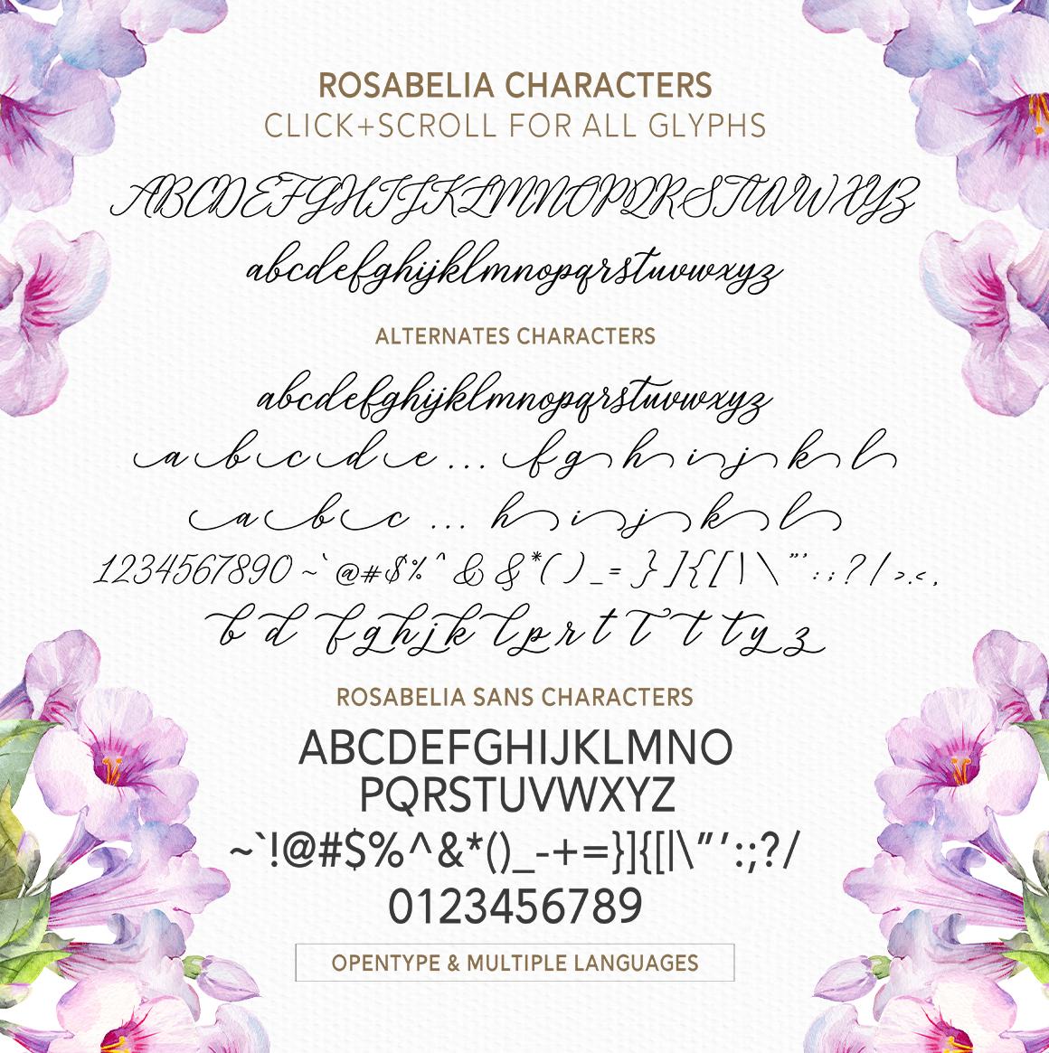Rosabelia - Script & Sans Serif example image 10