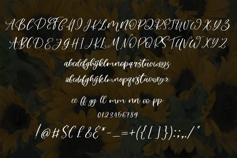 Avantika Font Duo example image 6