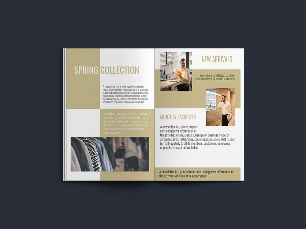 Professional Newsletter - 6 Printable Templates example image 11