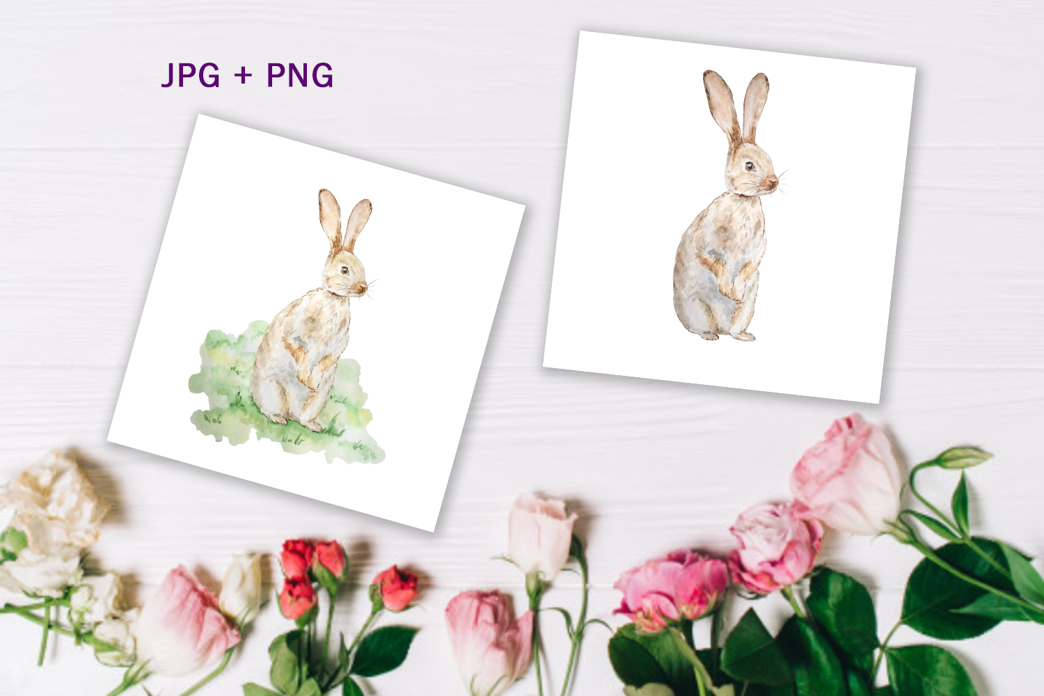 Watercolor Spring Rabbit Clipart Set example image 4
