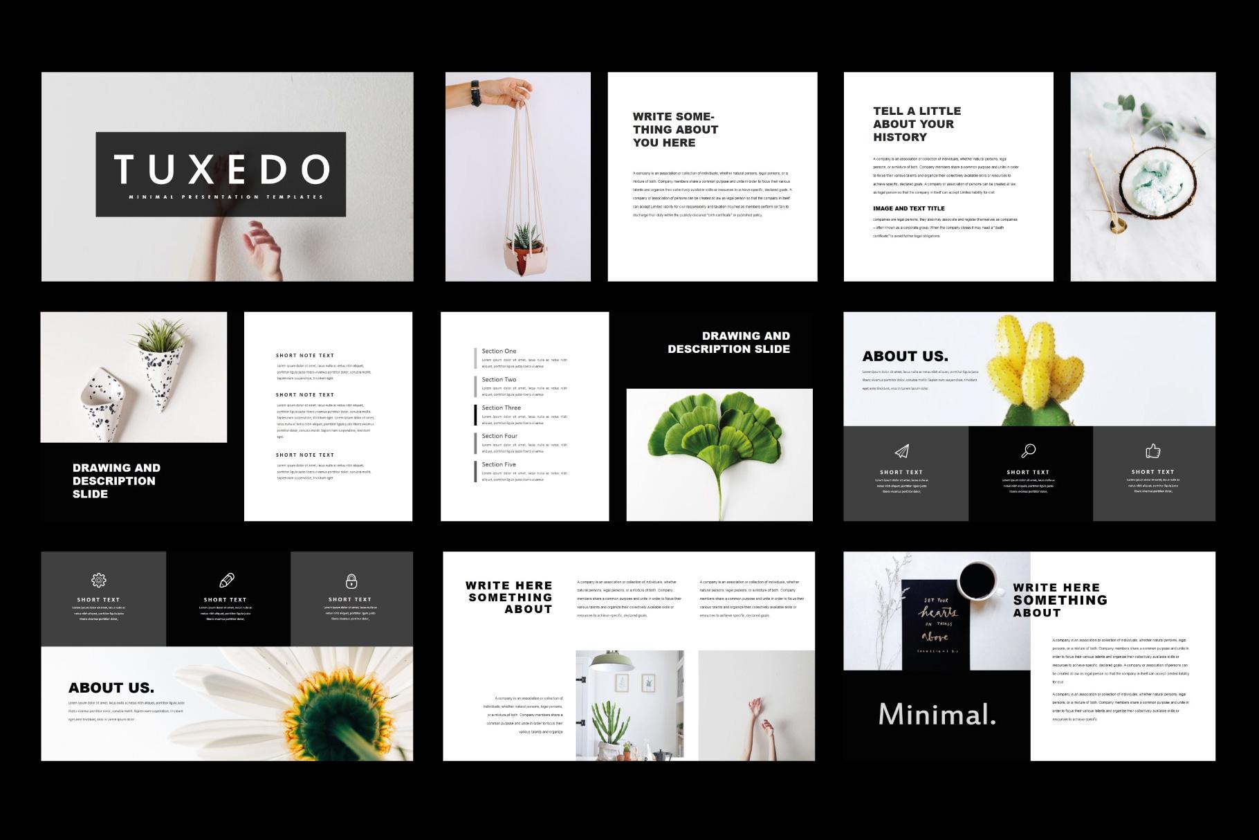 Tuxedo Minimal PowerPoint Templates example image 2