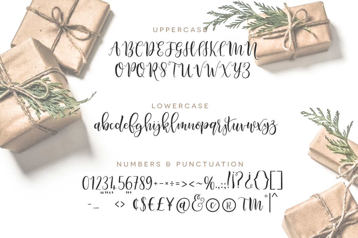 Paper & Twine Font Duo example image 3