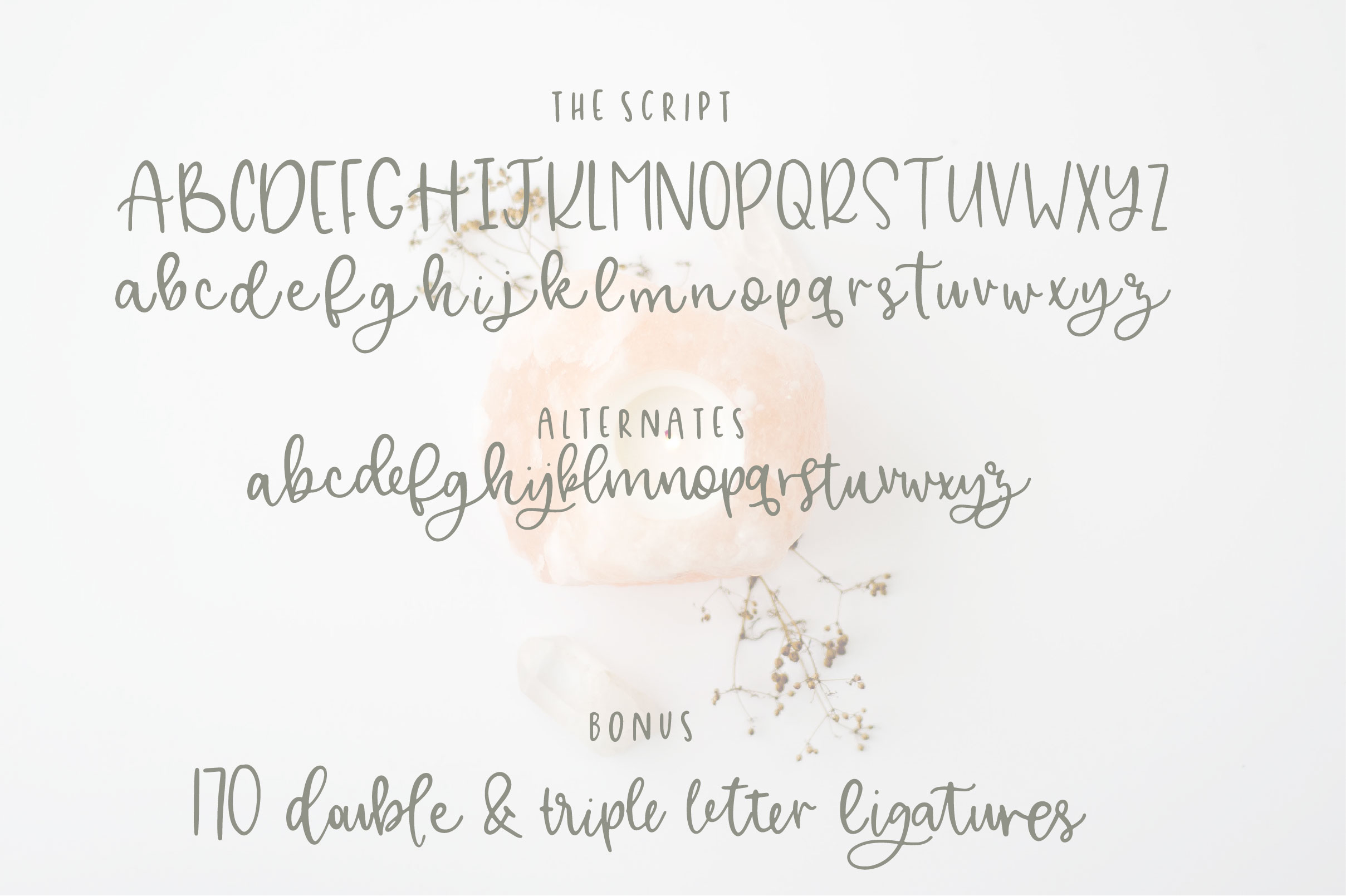 Alley Font Duo example image 2
