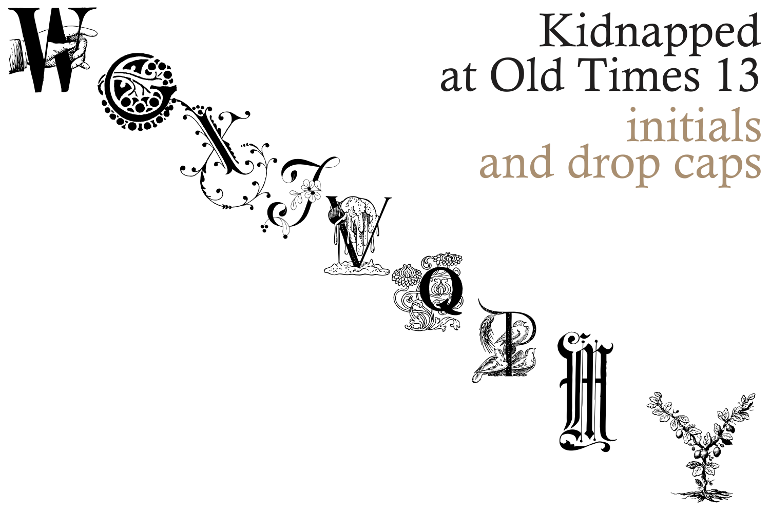 Kidnapped at Old Times 13 example image 1