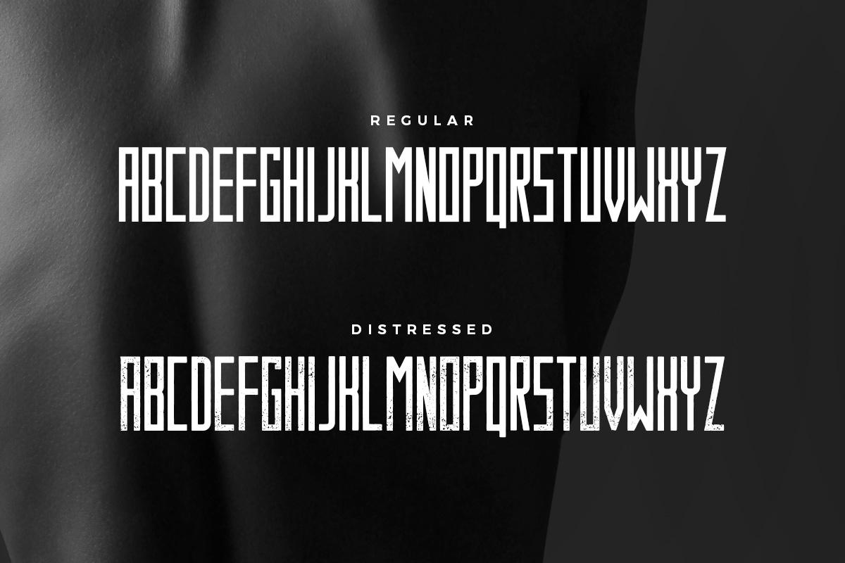 Behemoth Typeface example image 4