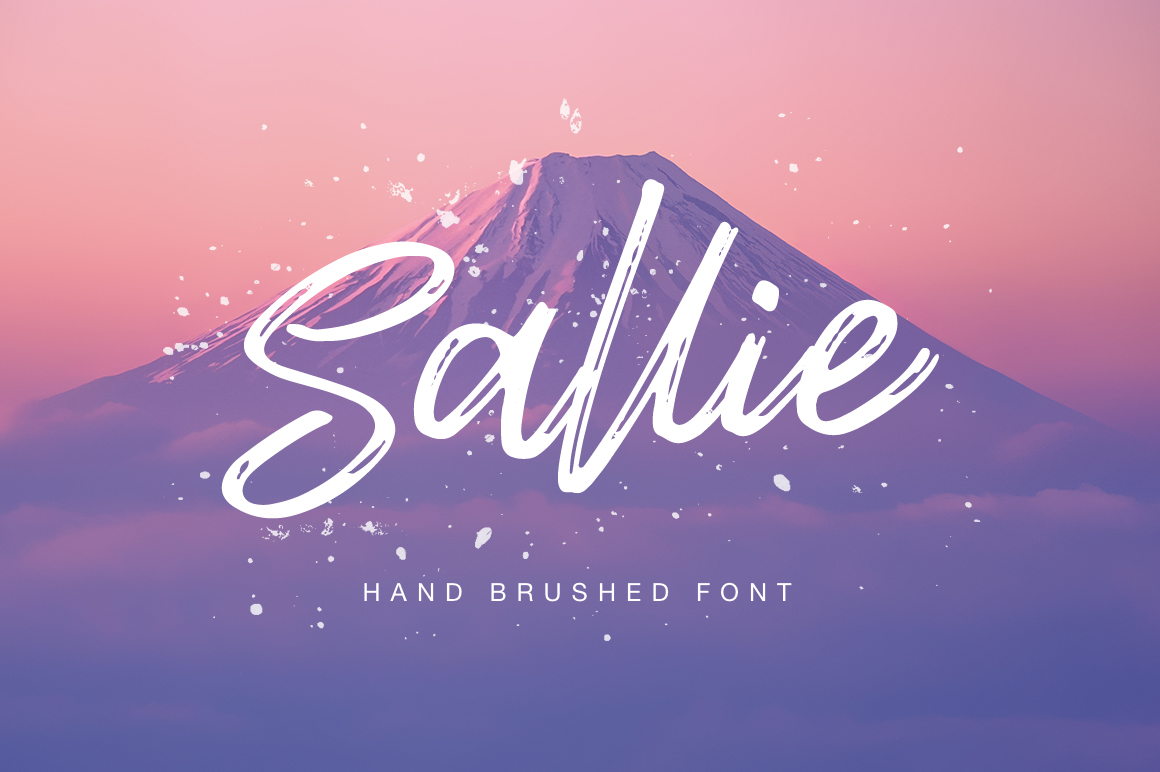 Sallie font example image 1