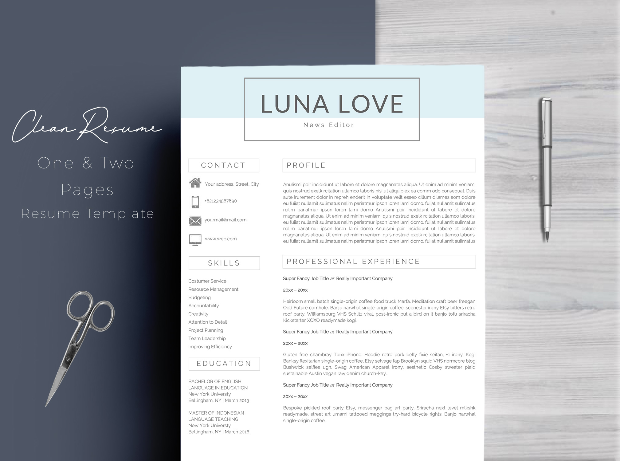 Professional 4 Pages Resume Template example image 1