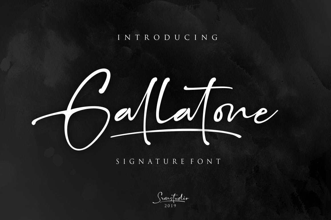 Gallatone Signature example image 1