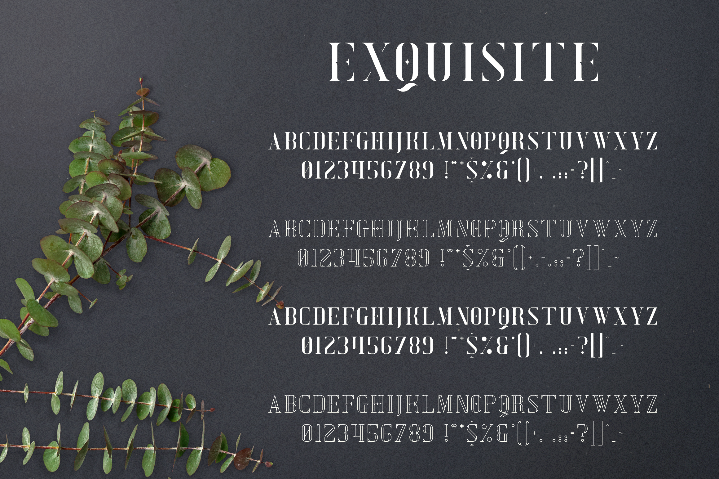 Exquisite - Serif Typeface|4 Styles example image 10