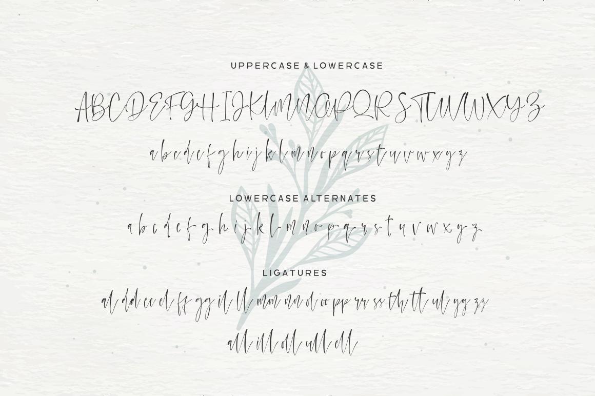 Watercoral // Natural Script Font example image 9