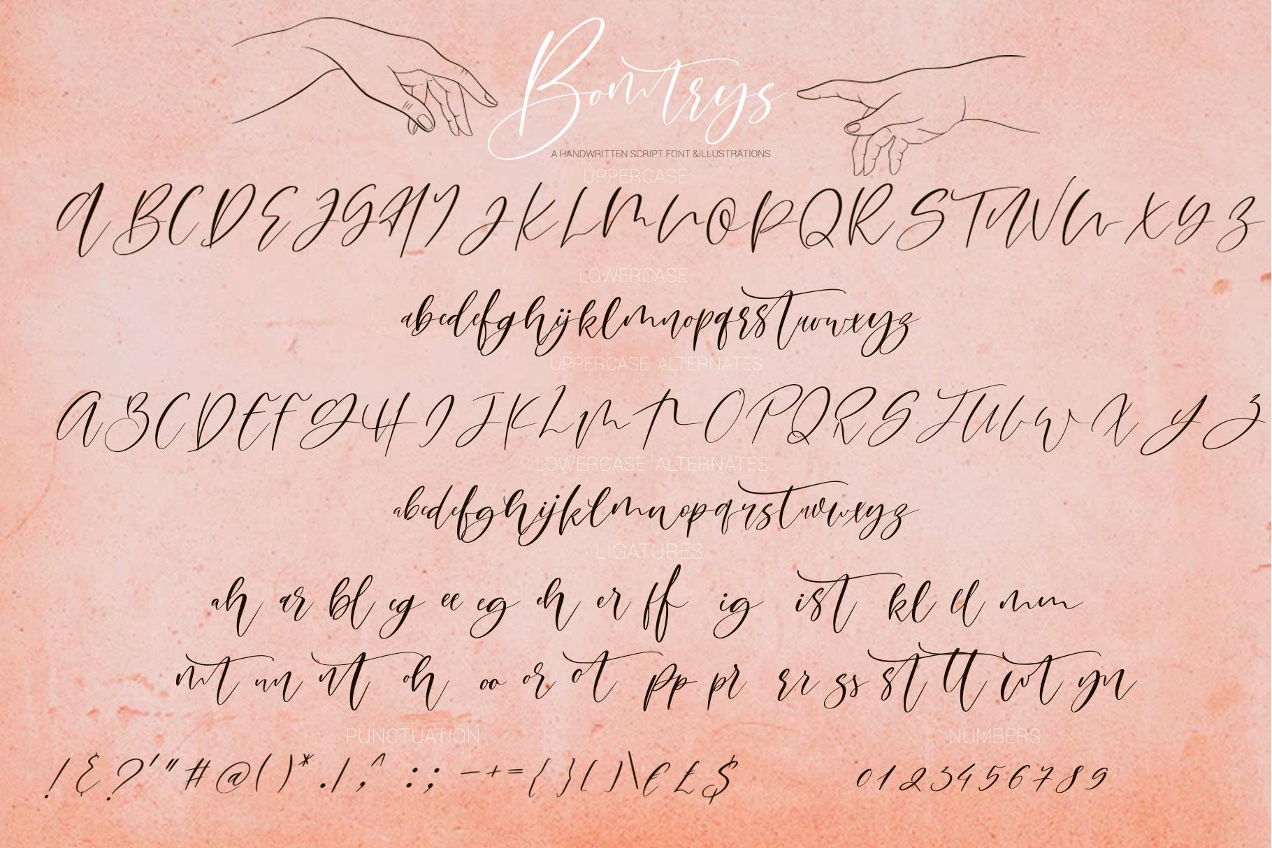 Bomtrys Script Font & Illustrations example image 12