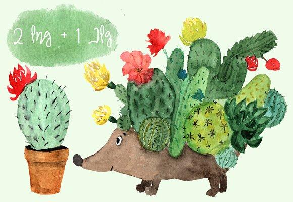 Watercolor Cactus Hedgehog PNG+JPG example image 1