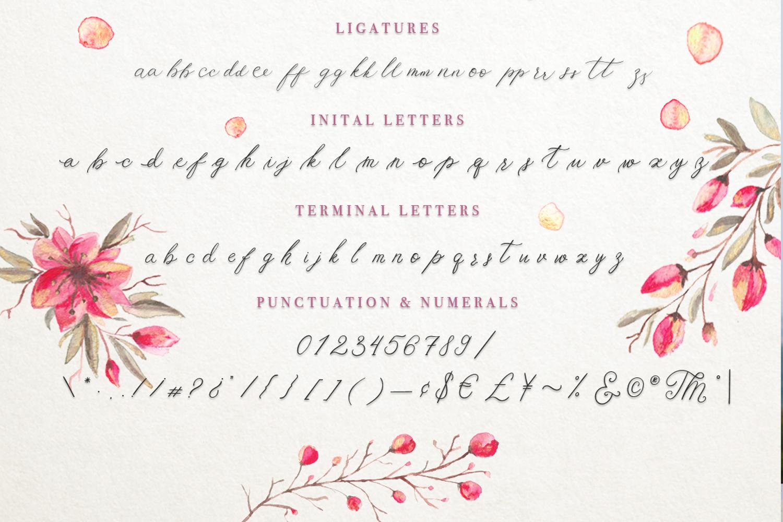 Schonheit font & watercolors. example image 9