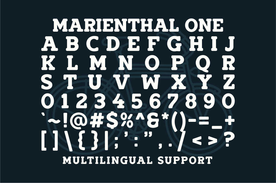 Marienthal Font Bundle Extras! example image 4