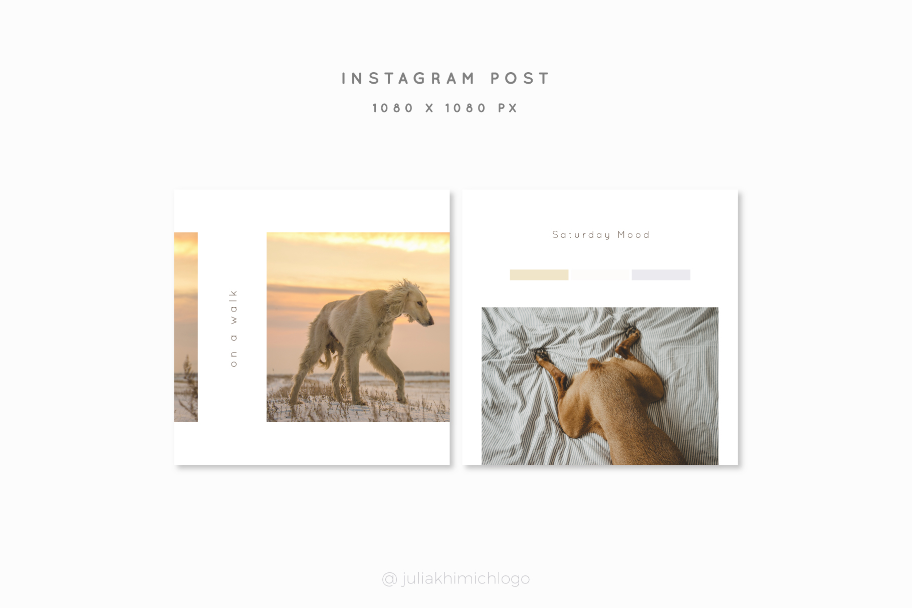 Instagram Post & Stories. Pets example image 9