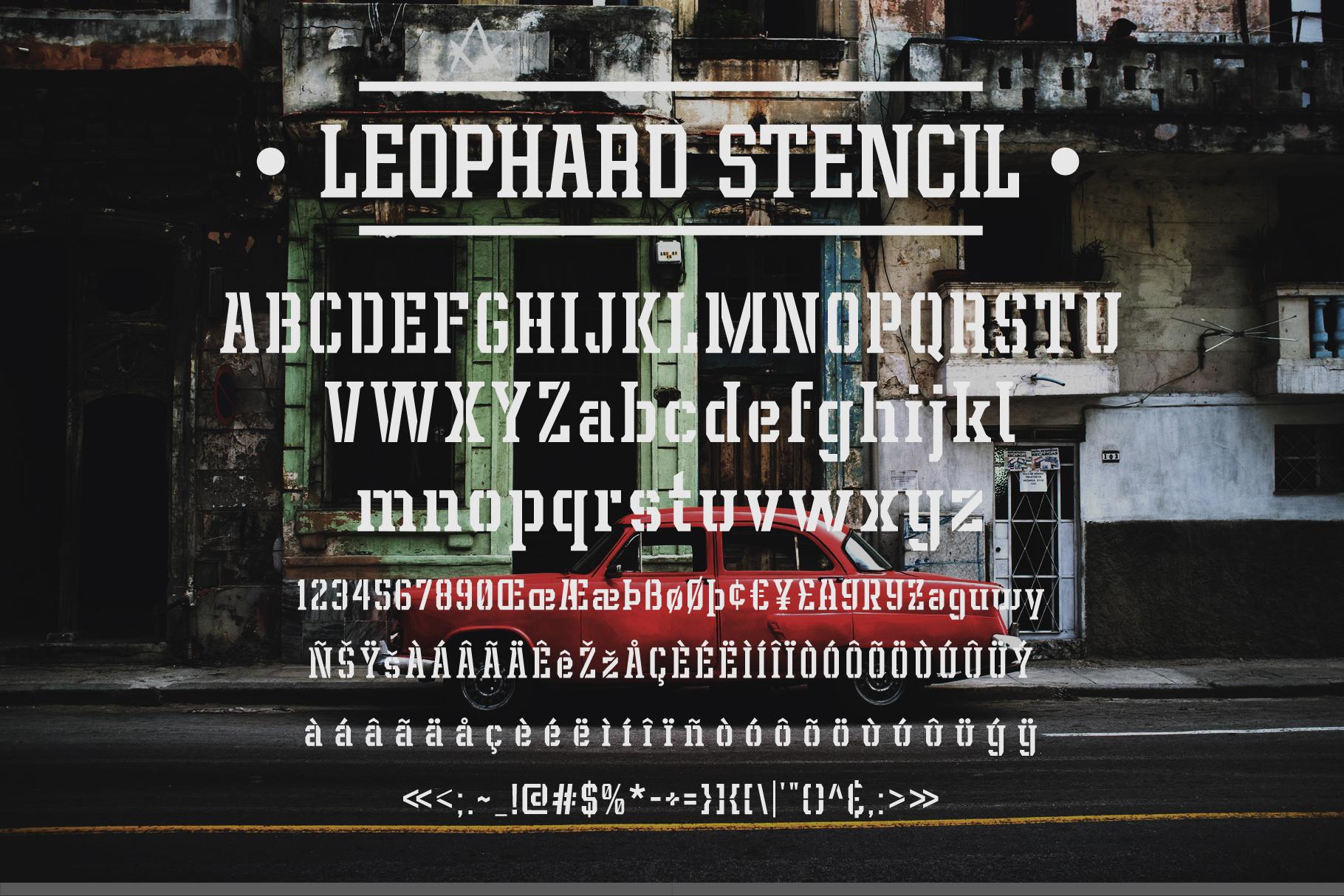 Leophard Font Family example image 6