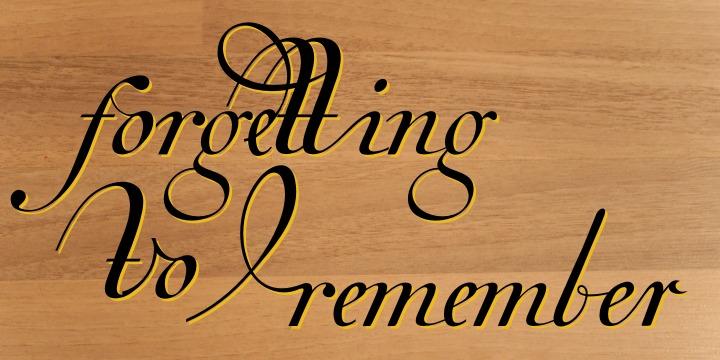 Van den Velde Script PRO example image 9