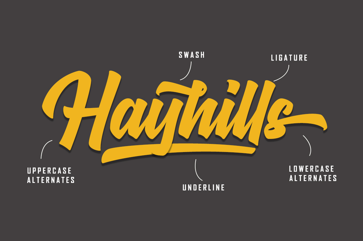 Hayhills Script example image 2