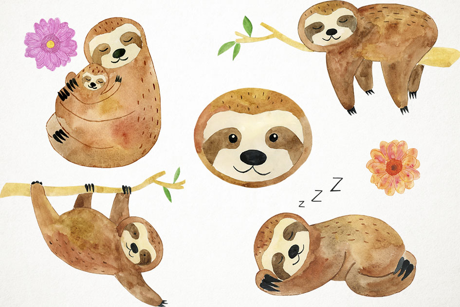 Watercolor Sloths Clipart, Animals Clipart, Sleepy Sloths example image 2
