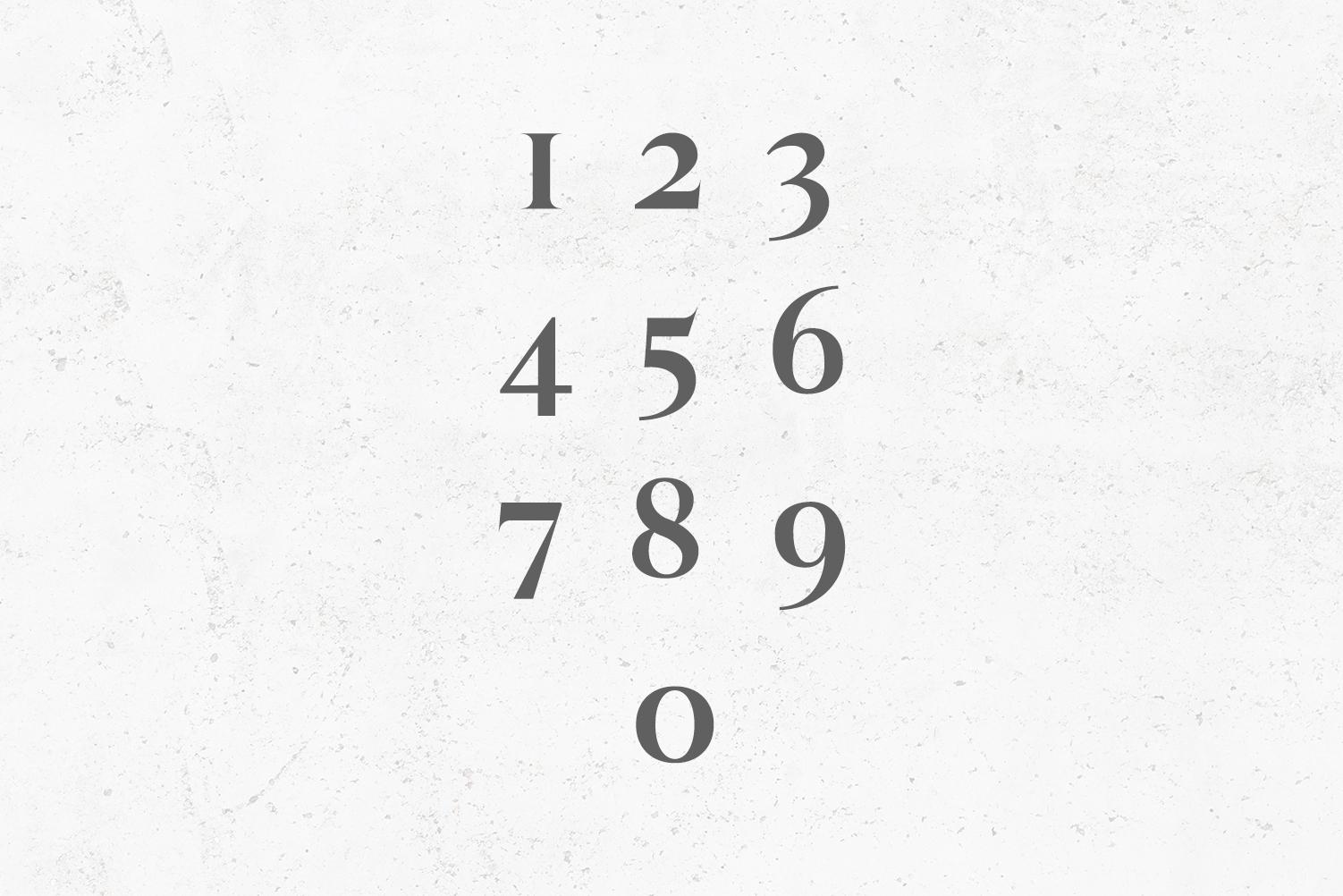 Wacian Serif Font Family Pack example image 5