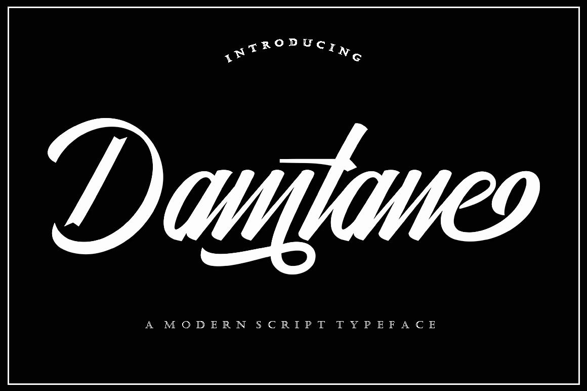 Damtane example image 7