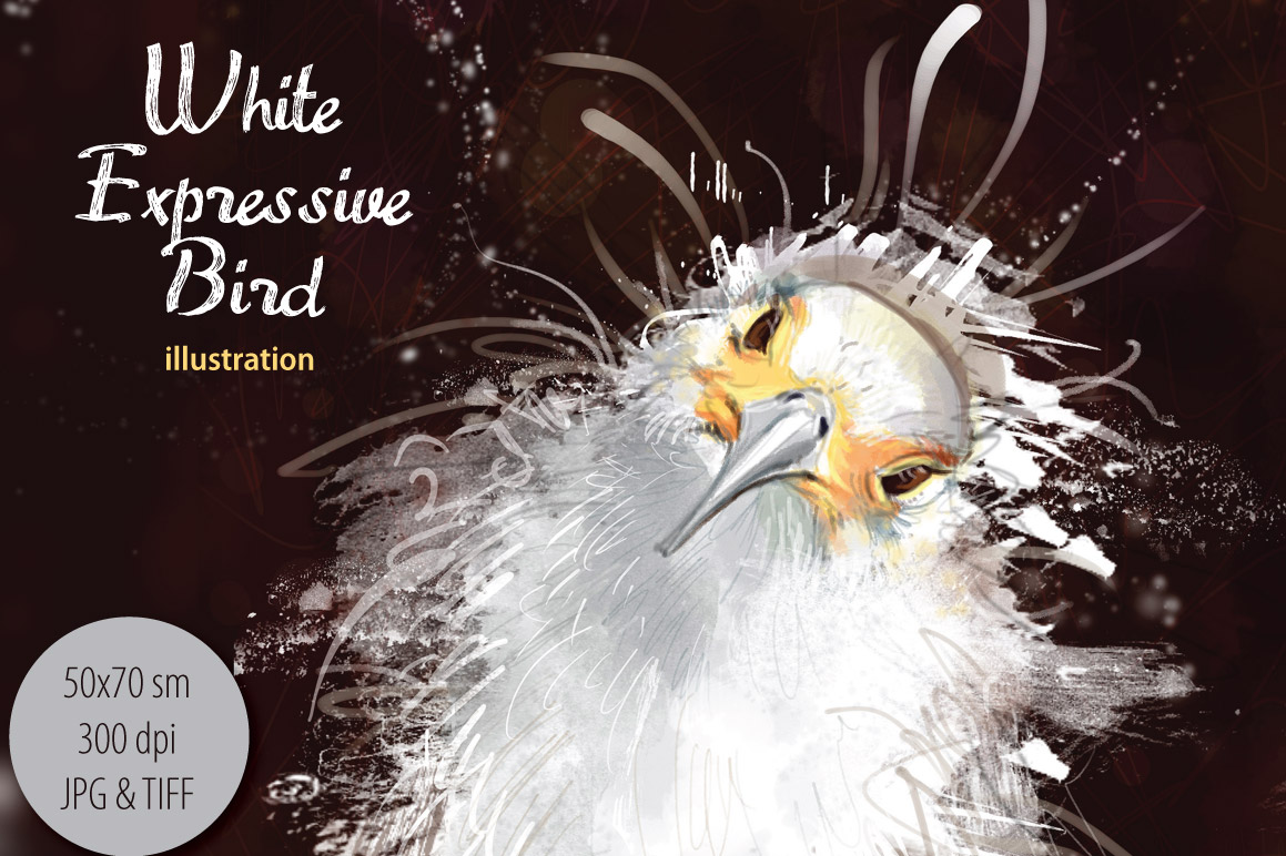 White Bird example image 1