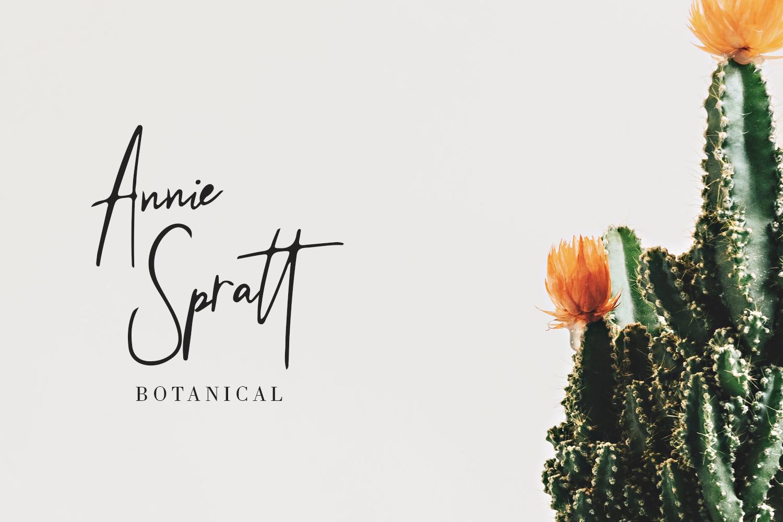 Beringin Stylish Signature Font example image 6