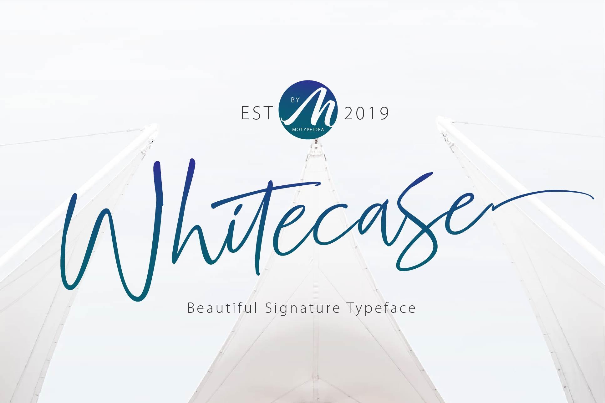 WHITECASE Script example image 1