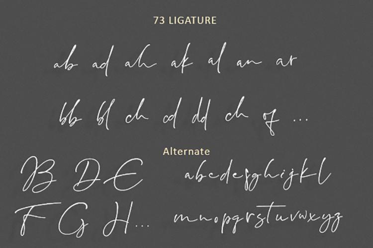 Pandawa Script example image 8