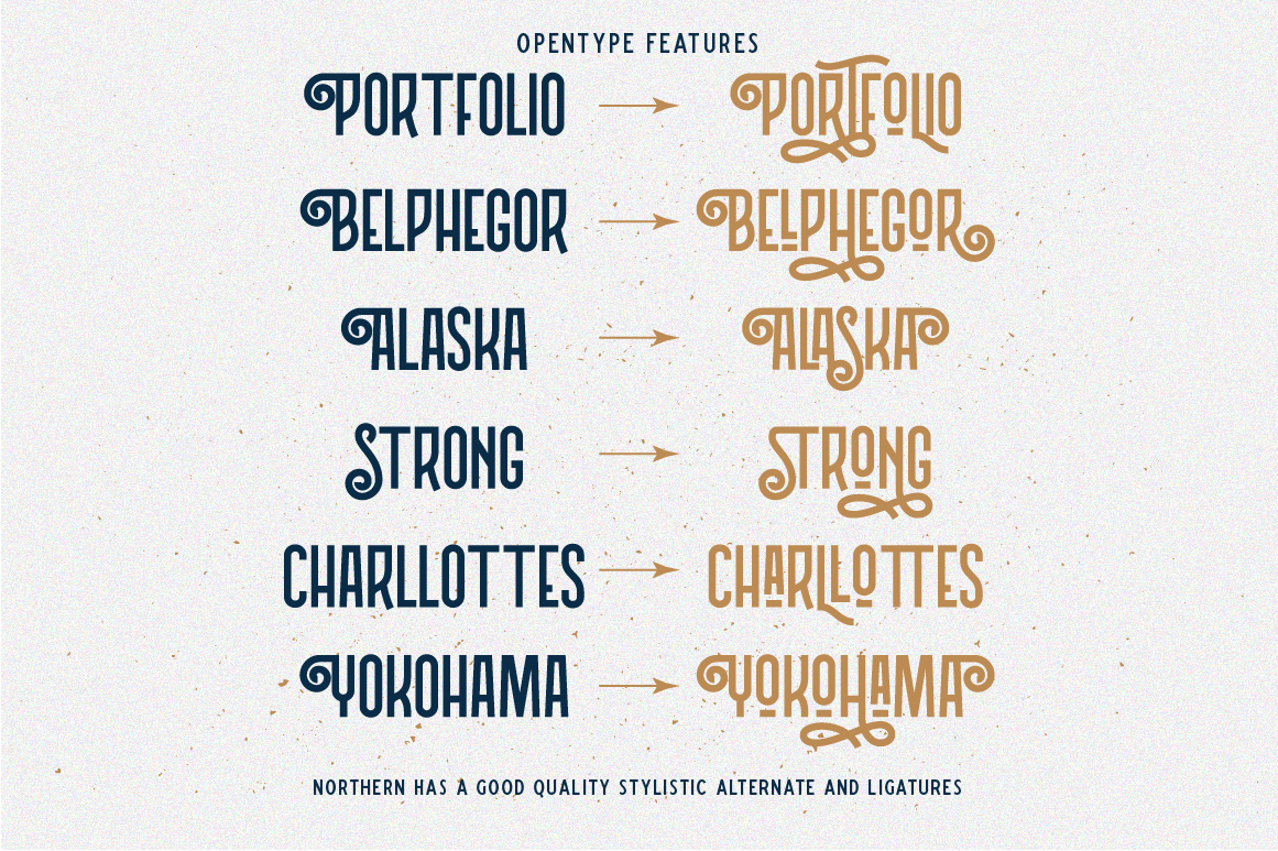 Northern 5 Fonts with Extras example image 3