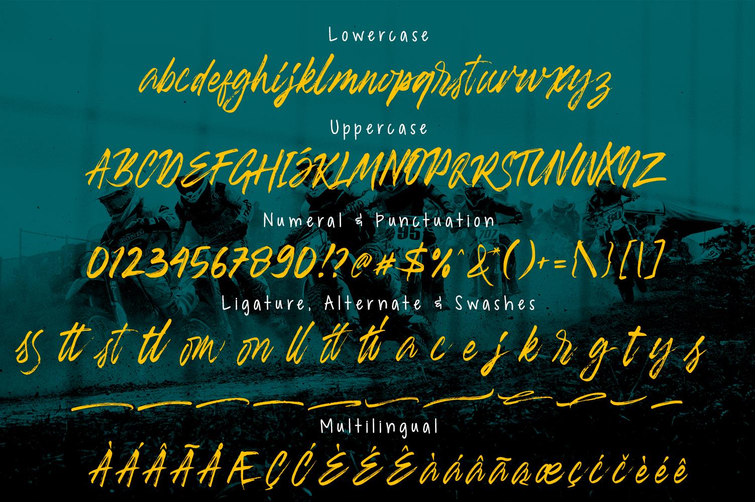 Banshee Brush Script example image 9