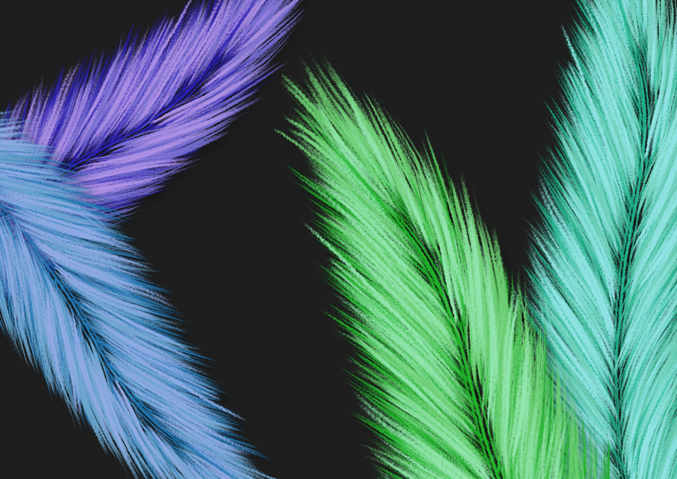 Fuzzy Feathers PNG example image 3